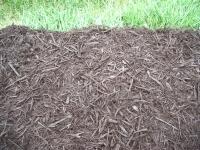 cocoa-mulch