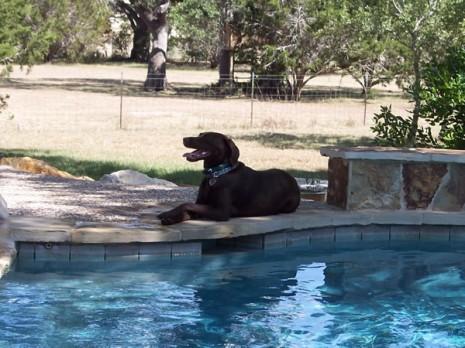pool-pose